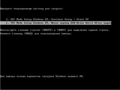 выбрать TXT Mode Setup Windows XP